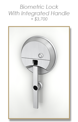 Biometric Lock - with integrated handle
